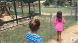 Angry Baboon Monkey Smacks little Girls in the Face with Poop :))